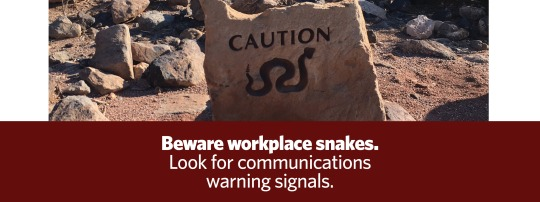 Workplace Snakes Graphic